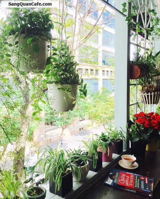 Sang quán cafe đường Đồng Khởi