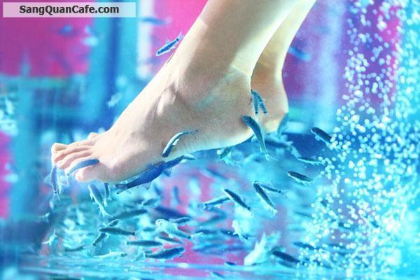 cần sang nhượng lại quán Cafe massage cá