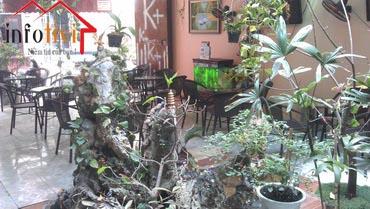 Sang quán Cafe Cầu Giấy, Hà Nội.